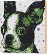 Boston Terrier Puppy Wood Print by Dean Russo