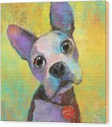 Boston Terrier Puppy Dog Painting Print Wood Print