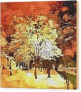 Boston Winter Wood Print