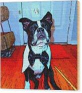 Bostons Ball 6 Wood Print