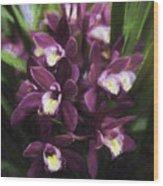 Botanic Garden Orchid Bouquet 5 Wood Print