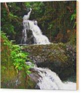 Botanic Gardens Waterfall Wood Print