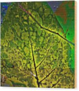 Botanic Glow Wood Print
