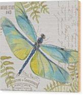Botanical Dragonfly-jp3423b Wood Print