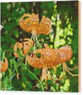 Botanical Master Gardens Art Prints Orange Tiger Lilies Baslee Troutman Wood Print