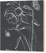 Botanique 2 Wood Print