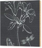 Botanique 3 Wood Print