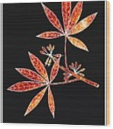 Botany 1 Wood Print