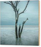 Botany Bay Plantation Edisto Island Sc Wood Print