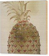 Botany: Pineapple, 1585 Wood Print