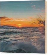 Botany Sunset Splash Wood Print
