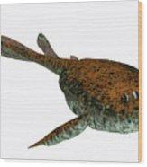 Bothriolepis Fish On White Wood Print