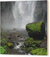 Bottom Of Wakeena Falls Wood Print