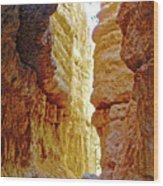 Bottom Of Wall Street On Navajo Trail In  Bryce Canyon National Park, Utah  Wood Print