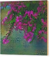 Bougainville Delight Wood Print by Seema Sayyidah