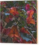 Bougainvillea At Joe's Secret Garden Wood Print