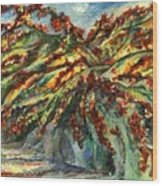 Bougainvillea Wood Print