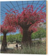 Bougainvilleas Tree Scultures Wood Print