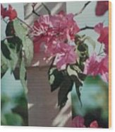 Bouganvillea Wood Print