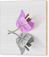Bouganvillea Reflection Wood Print