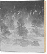 Boulder Canyon And Nederland Winter Landscape Wood Print