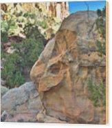 Boulder Castle Wood Print