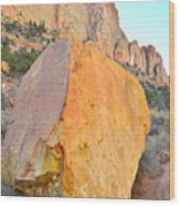 Boulder Color  Wood Print