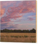 Boulder County Colorado Country Sunset Wood Print