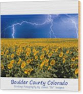 Boulder  County Colorado Wood Print