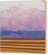 Boulder County Farm Fields At First Light Sunrise Wood Print