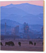 Boulder County Industry Meets Country Wood Print