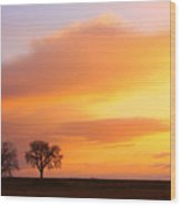 Boulder County Sunrise Wood Print