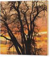 Boulder  County Sunset Wood Print