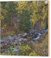 Boulder Creek Autumn View  Wood Print