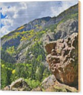Boulder In Ouray Canyon Wood Print