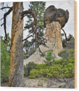 Boulder Mountain Wood Print