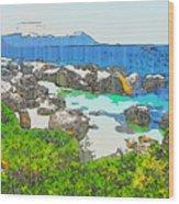 Boulders Wood Print by Jan Hattingh