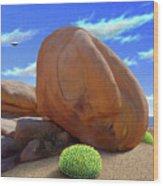 Boulders Wood Print