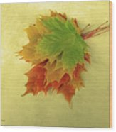 Bouquet De Feuilles / Bunch Of Leaves Wood Print