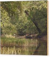 Bourbeuse Reflection Wood Print