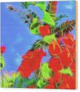 Bougainvillea Glow Wood Print
