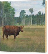 Bovine Bliss Wood Print