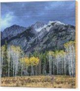 Bow Valley Parkway Banff National Park Alberta Canada II Wood Print