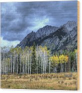 Bow Valley Parkway Banff National Park Alberta Canada IIi Wood Print