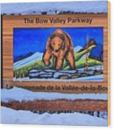 Bow Valley Parkway Snowy Entrance Wood Print