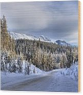 Bow Valley Parkway Winter Scenic Wood Print