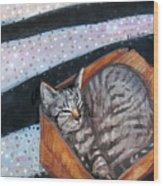 Box Cat Wood Print