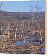 Boxely Swamp2 Wood Print