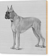 Boxer At Attention Wood Print