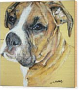 Boxer Wood Print by Tanya Patey